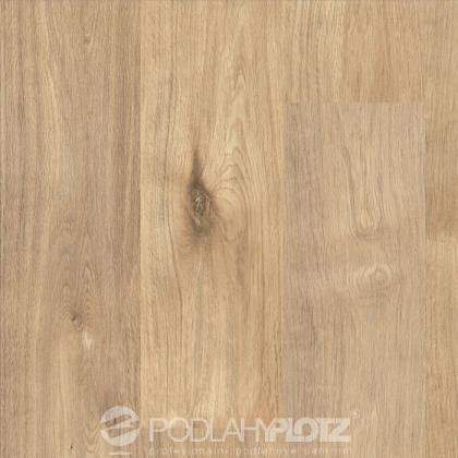 FLOORCLIC SOLUTION 31 F 75006 Dub Achensee